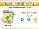 Bingo Vingo Room Information