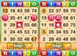 Bingo Vingo game