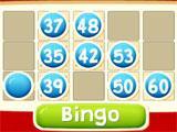 Bingo 90 in Lua Bingo