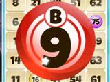 Bingo Fever - World Trip B-9