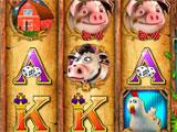 Gameplay in Players Paradise Slots