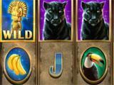 Gameshow Slots: Playing Slots