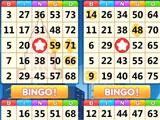 Playing with 4 Cards in Bingo Holiday