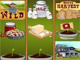 Wild Fortune Casino Farm Fair Slots