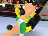 Wrestling in Wrestling Revolution 3D