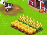 Café World building a farm