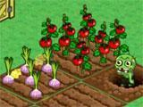 Harvesting crops in Zombie Farm 2
