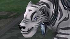 Wizard 101 White Tiger