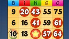 Bingo Drive: Gameplay